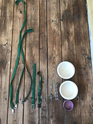 Dog collars, leashes and bowls for Sale in Belleair, FL