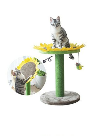 Sunflower Scratching Post, Bed, Tower for Sale in Plano, TX