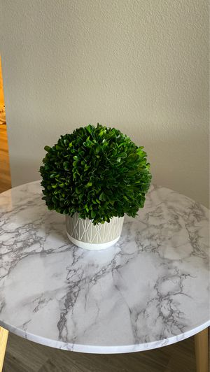 Decorative potted plant for Sale in Yorba Linda, CA