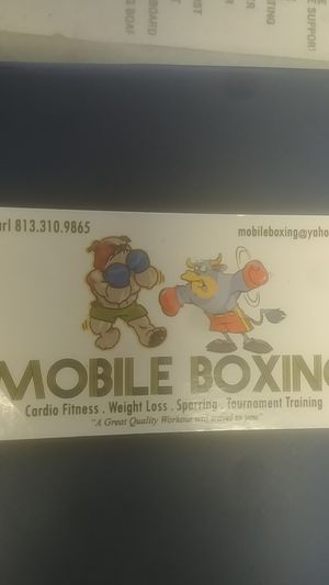 Mobile Boxing / Personal Trainer for Sale in Tampa, FL