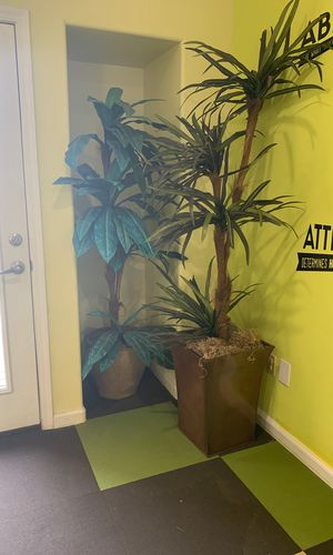 Fake plants and trees for sale for Sale in Phoenix, AZ