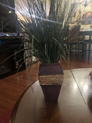 Decor plant for Sale in Kissimmee, FL