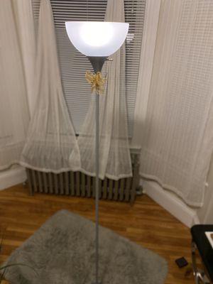 Floor Lamp + Present Decorative Plant for Sale in Boston, MA