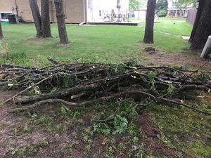 Free Fire Wood for Sale in Orland Park, IL