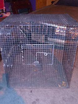 Iron Bird Cage Black for Sale in Compton,  CA