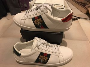 Gucci Ace Tiger Sz 10 preowned for Sale in Westminster, CO
