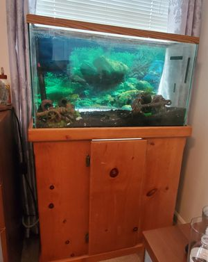 Aquarium for Sale in Denver, CO