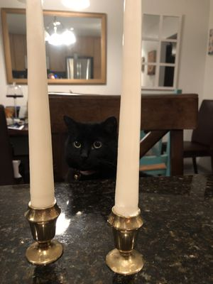 Small Brass Candleholders & Candles (cat not included!) for Sale in San Diego, CA