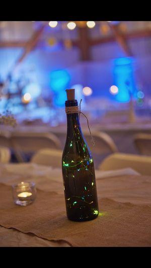 19 wine bottle lights for Sale in Pine River, MN