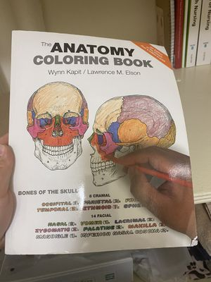 Anatomy coloring book for Sale in Bell, CA