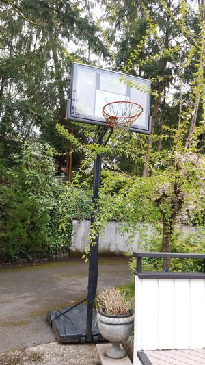 Basketball Hoop in great condition for Sale in Bellevue, WA