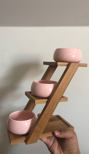 Pastel Pink Succulent 4 tier Ladder for Sale in Chicago, IL
