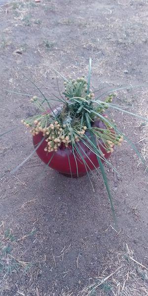 Faux flowers in pot for Sale in Fresno, CA