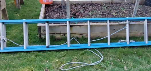 WERNER 20 ft Fiberglass Extension Ladder, 250 lb Load Capacity No Offers for Sale in Seattle,  WA