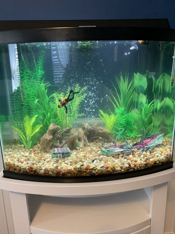 Make an Offer - Brand new fish tank aquarium bow front 20 gallon