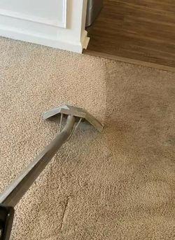 Carpet Cleaner for Sale in Azalea Park,  FL