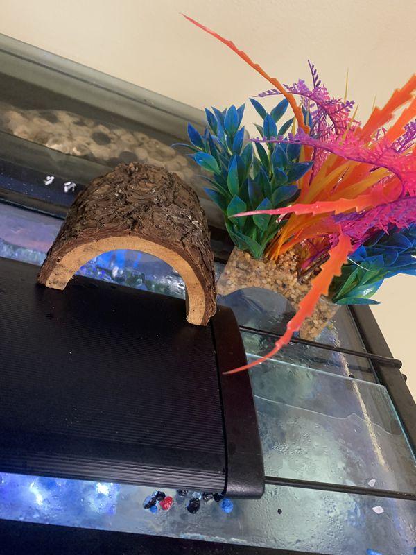 Fish Tank Decor