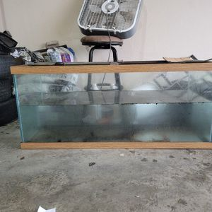 75 Gallon Aquarium for Sale in Dallas, TX