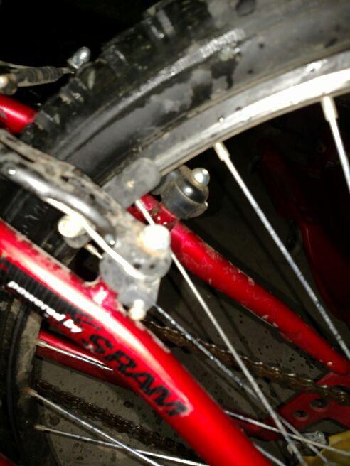 Bike with shocks and rear basket