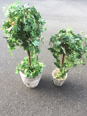 Topiary Set for Sale in Portland, OR