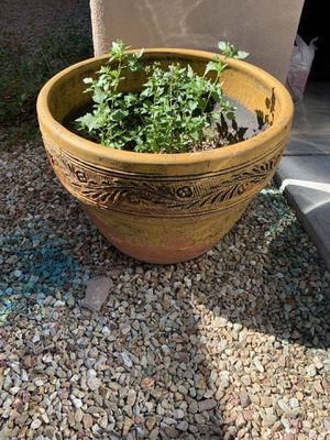 Large Planters and Wooden Folding Chair for Sale in Laveen Village, AZ