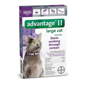 4 boxes of Advantage II for large cat - 6 doses each box for Sale in Howell Township, NJ