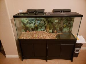 55 Gallon Fish Tank with stand for Sale in Ruskin, FL