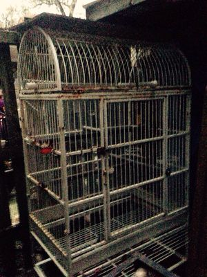 Very large iron bird cage. 200$ for Sale in Silver Spring, MD