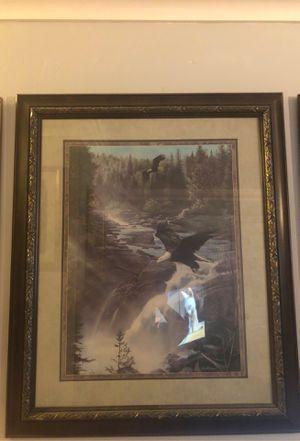 Bald eagles over river for Sale in San Jose, CA