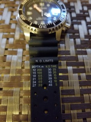 Citezen eco Drive diver 200M brand new model E168- S100623 $175 they going for more used in Ebay look your sell for Sale in Providence, RI