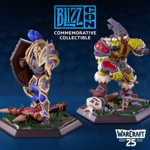 Blizzcon 2019 Commemorative Collectibles W25 for Sale in Portland, OR