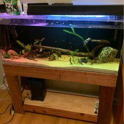 55 Gal Actylic Aquarium for Sale in Saratoga,  CA
