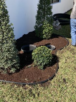 Lanscaping for Sale in Lantana,  FL