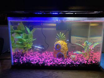 FISH TANK/AQUARIUM for Sale in Tracy,  CA