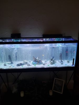 60 gallon fish tank for Sale in Montgomery, AL