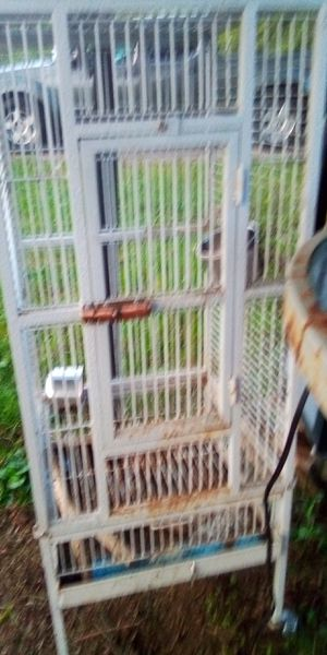 Large bird cage for Sale in Gallatin, TN