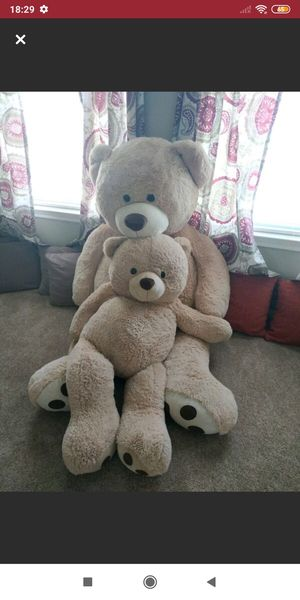 Teddy Bear Set for Sale in Round Rock, TX