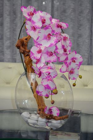 Orchid Flowers with moon shape vase / Home Decor for Sale in Homestead, FL