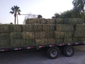 Alfalfa for sale by the Bail for Sale in Las Vegas, NV