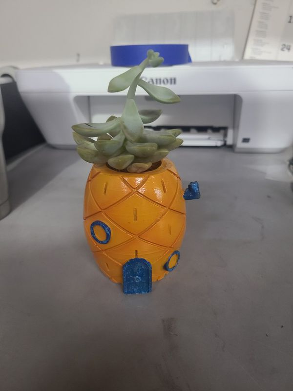 Pokemon Dragon Ball Z Succulent Planters 15 Ea
