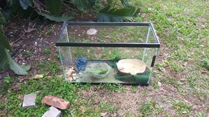 Reptile tank or fish tank for Sale in Tampa, FL
