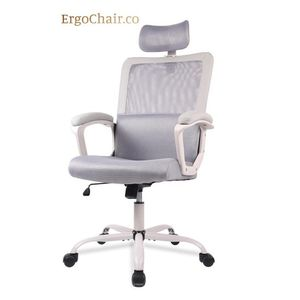 We Deliver! Ergonomic Mesh Office Chair with Neck Support for Sale in Kent, WA