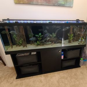 120 Gallon Aquarium / Fish Tank + Everything Included for Sale in Los Angeles, CA