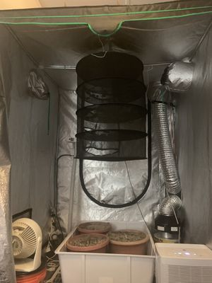 Grow tent-everything included for Sale in Malden, MA