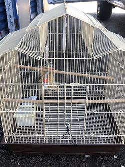 Bird Cage for Sale in Richardson,  TX