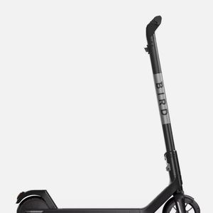 Bird Scooter for Sale in Aurora, CO
