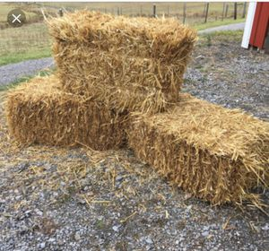 Hay bales for Sale in Leesburg, VA