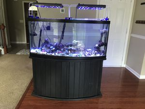 72 gallons fish tank for Sale in Raleigh, NC
