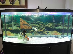 Tank for Sale in Wenatchee, WA