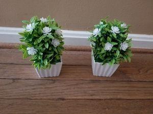 Fake Plants for Sale in Centreville, VA